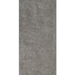 FZ 30x60 RAK LOUNGE anthracite LP RT