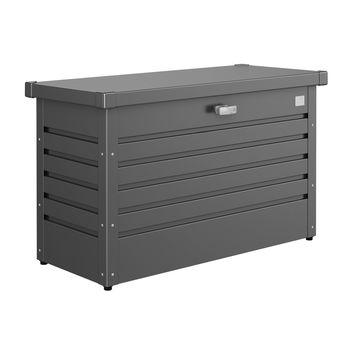 FreizeitBox 100 dunkelgrau-met 101x46x61