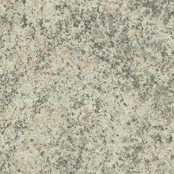 WAP 124 Granit grau beige 300x3,5cm