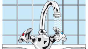 Perlstrahler spart mehr Wasser