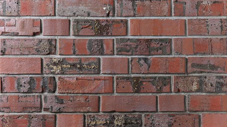 Schwarz-Rote Vormauerziegel
